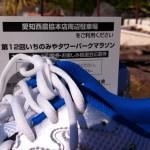 いちのみやタワーパークマラソンに参加します。マラソンの部で10kmを走ります