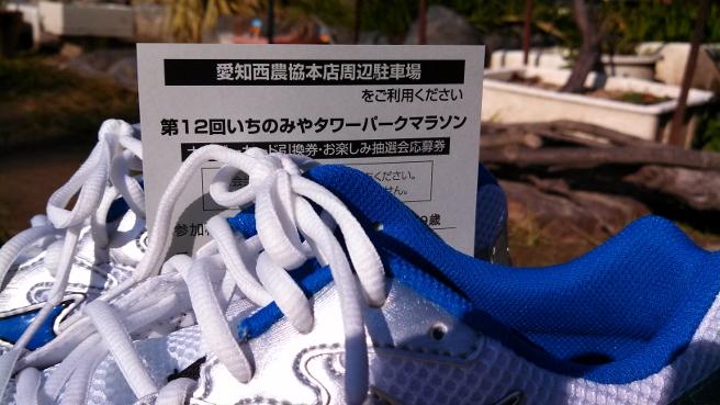 20140105いちのみやタワーパークマラソン