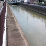 大雨による濁流が何日か経ってから流れ着いて、用水や川が増水します