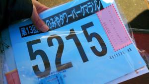 20150218いちのみやタワーパークマラソン05