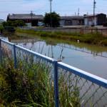 田植えシーズンを間もなく迎えるために、用水が増水しています