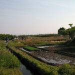 町内会の皆様が集まって草刈りなどの用水掃除
