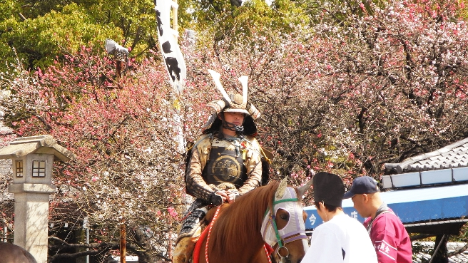 20140415桃花祭