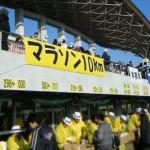 20140124マラソン-受付