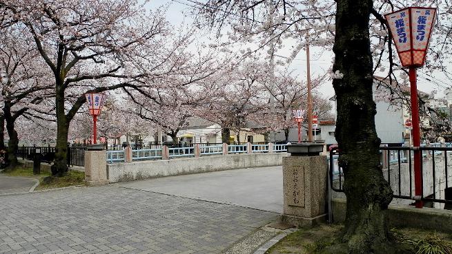 20160406大江川にかかる橋